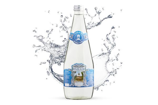 Parádi, Schwefelwasserstoff-haltiges Heilwasser